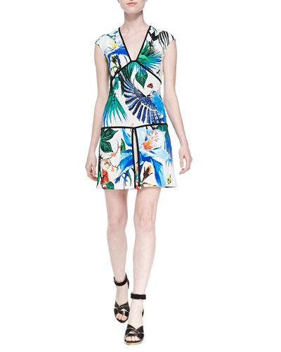 Alize-Print Piped Drop-Waist Dress
