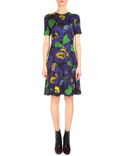 Almira Floral Fit-and-Flare Dress