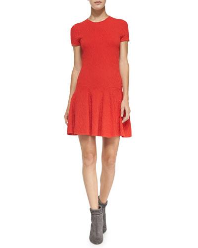 Short-Sleeve Flared Jacquard Dress