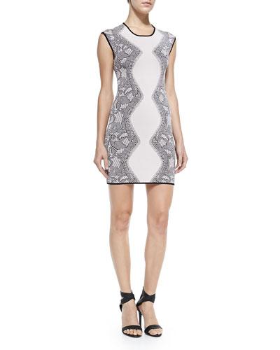 Alexander Lace-Print Knit Dress