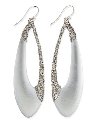 Encrusted Asymmetric Lucite Teardrop Earrings