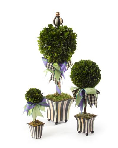 Courtly Stripe Topiary