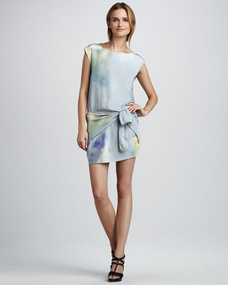a01c157419 Theyskens' Theory Dinta Watercolor Dress