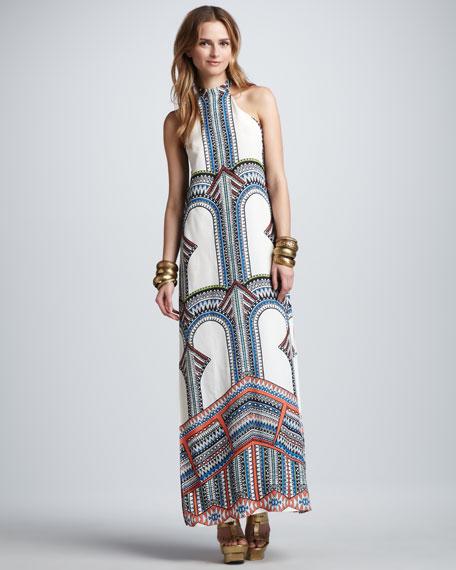 771766c201b Alexis Winona Tribal-Print Maxi Dress