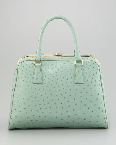 a075d7a32a Prada Ostrich Handbags - Foto Handbag All Collections Salonagafiya.Com