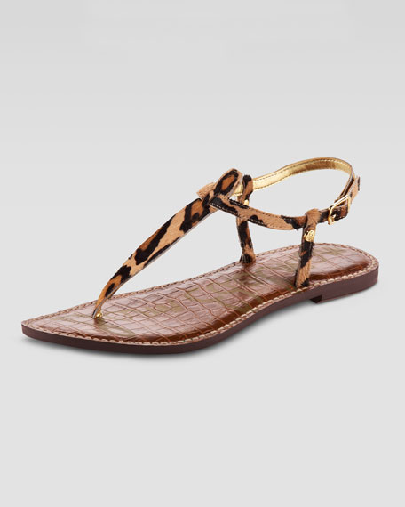 8718f64cd6f3a8 Sam Edelman Gigi Leopard-Print Thong Sandal (CUSP Most Loved!)