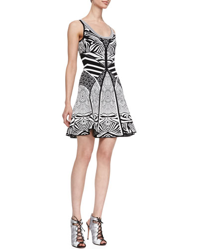 Fanny Sleeveless Fit-and-Flare Dress, Zebra Tattoo