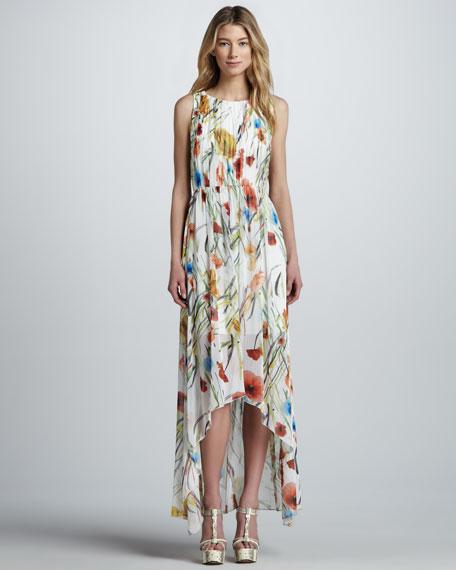 Alice Olivia Mel Fl Print Maxi Dress