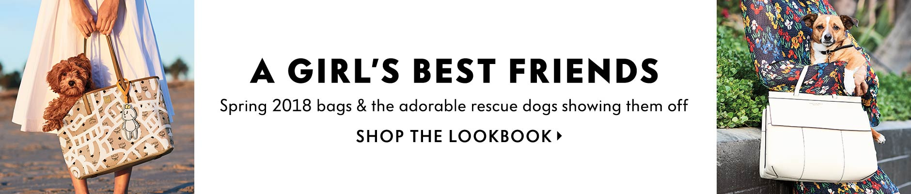 A Girl's Best Friends - Spring 2018 bags & the adorable rescue dogs showing them off