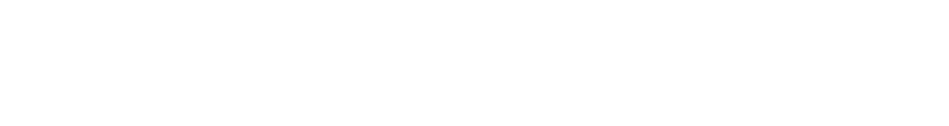Will Leathergoods