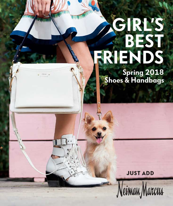 The Shoe and Handbag Book 2018