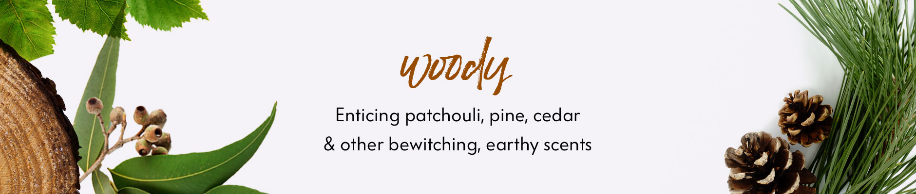 Fragrance Finder: Woody