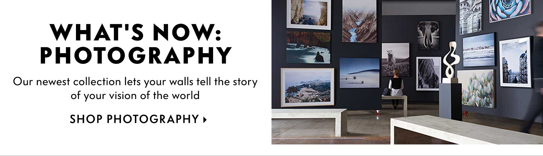 What's Now: Photography - Our newest collection lets your walls tell the story of your vision of the world