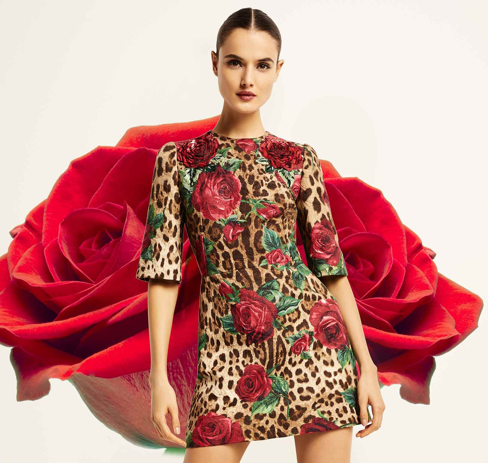 6ca31cf237db Dolce   Gabbana Lookbook at Neiman Marcus