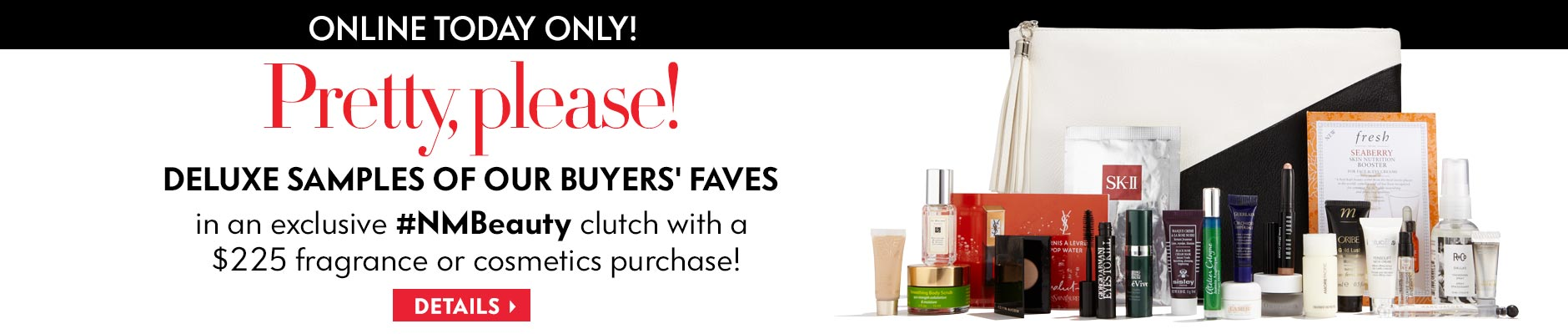 The Gift of Beauty: Free clutch and samples with purchase!