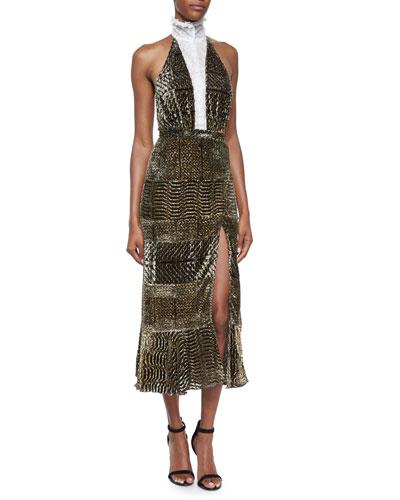 Lace-Inset Velvet Backless Dress