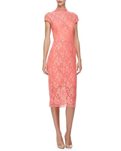 Cap-Sleeve Lace Sheath Dress, Pink/Multi
