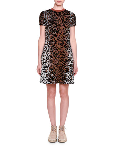 Short-Sleeve Leopard-Print Shift Dress