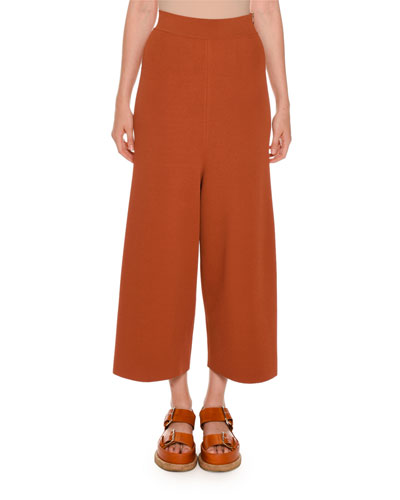 High-Rise Wide-Leg Palazzo Pants, Terra Cotta