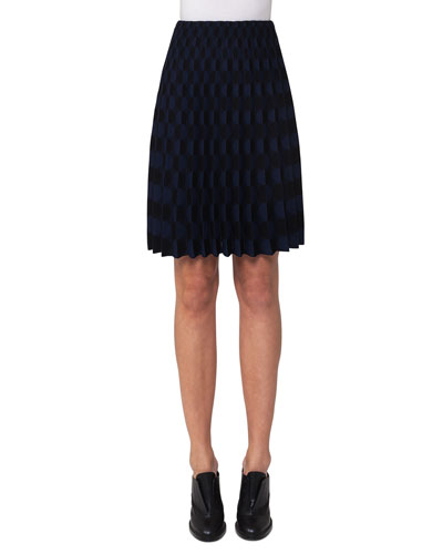 Pleated Punto Knit Skirt, Multi
