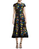 Cap-Sleeve Tulip Fil Coupé A-Line Dress, Black/Multicolor