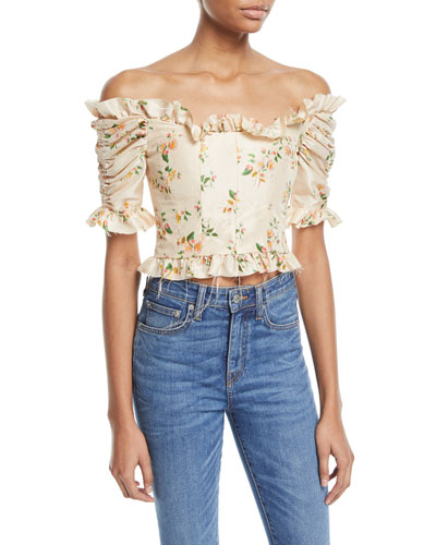 Off-the-Shoulder Mini Floral-Print Taffeta Corset Top