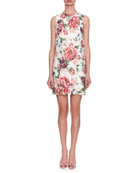 Sleeveless Rose-Printed Lace A-Line Dress