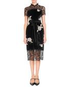 Erdem Keni Short-Sleeve Lace & Velvet Shift Dress