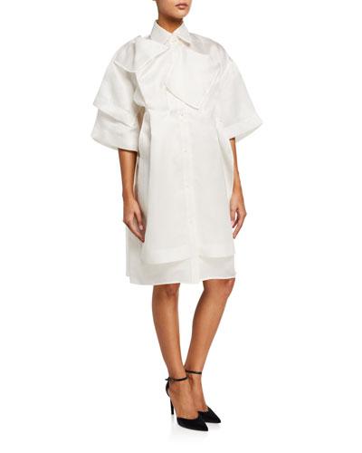 Silk Organza Shirtdress