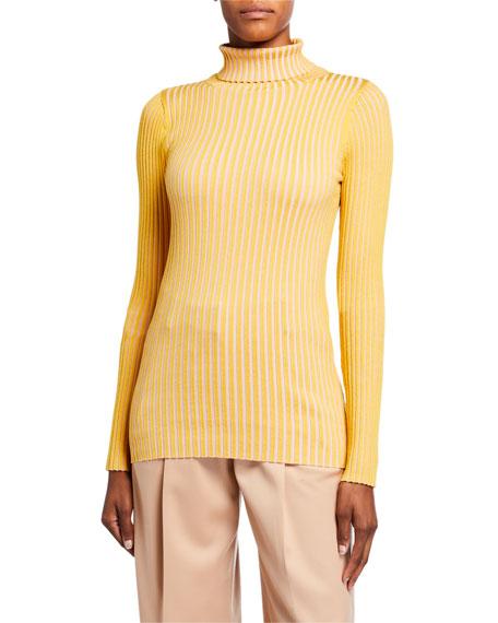 Sies Marjan Silk Striped Turtleneck Sweater