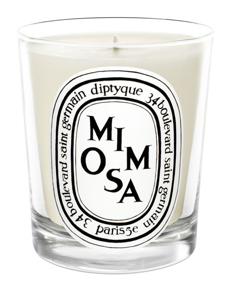 Diptyque 6.7 oz. Mimosa Scented Candle
