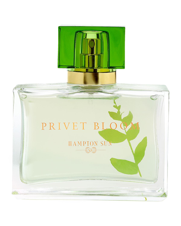 HAMPTON SUN Privet Bloom Eau De Parfum, 1.7 Oz./ 50 Ml