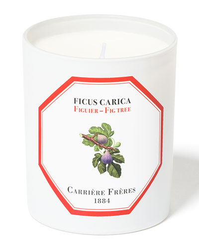 Fig Tree Candle, 6.5 oz. / 184 g
