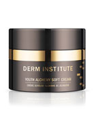 DERM INSTITUTE 1 oz. Youth Alchemy Soft Cream