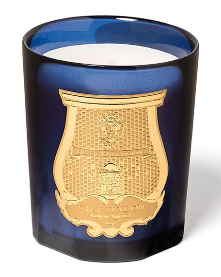 Cire Trudon 9.5 oz. Reggio Classic Candle