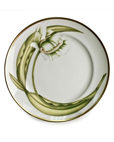 White Tulips Salad/Dessert Plate