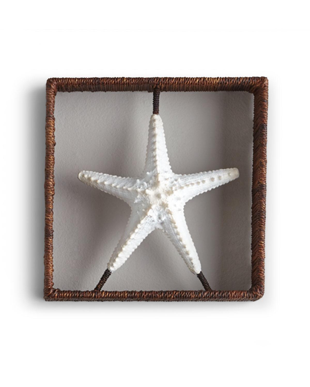 Starfish Shadowbox
