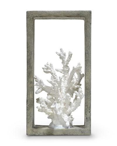 Finger Coral Shadowbox