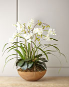 Faux Moth Orchid in Planter