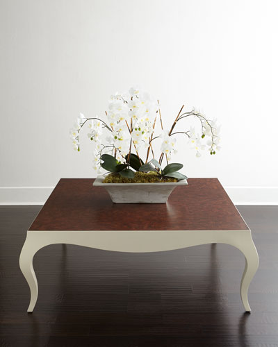 Donovan Coffee Table