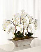 Armature Orchids Faux-Floral Arrangement