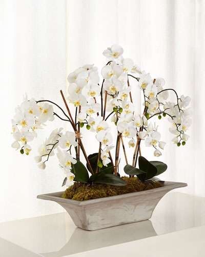 Armature Orchids Faux-Floral Arrangement