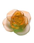 Rose Passion Orange/Green Flower