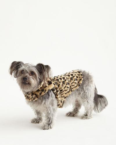 Extra-Small Faux-Leopard Dog Coat