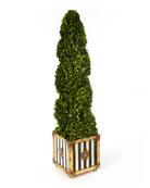 MacKenzie-Childs Indoor/Outdoor Faux-Boxwood Swirl Topiary