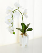 Selenite Orchid Faux Floral Arrangement