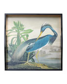 Audubon Birds Heron Tray
