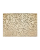 Modern Artistic Glass Rectangle Placemat, Gold