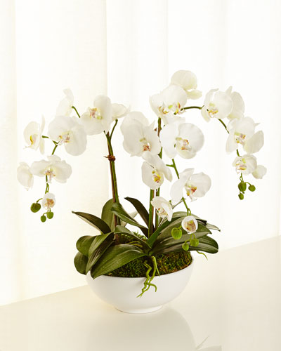 Orchid Phalaenopsis Faux-Floral