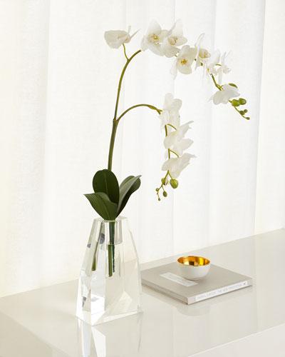 Crystal Ice Phalaenopsis Arrangement
